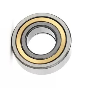 Chik SKF NTN Low Price 6407RS Zz Open Style Bearing for Motor Parts Made in China