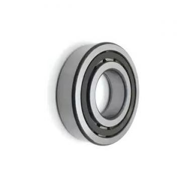 Factory Sell SKF Chrome Steel 6224 Deep Groove Ball Bearing