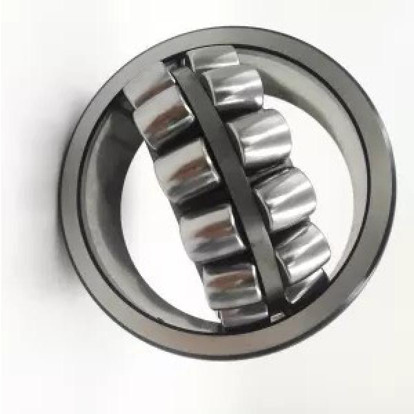SKF Nu2211ecp Cylindrical Roller Bearings Nu2213 Nu2214 Ecp Ecj Em Ec #1 image